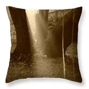 Sunlight On Swing - Sepia Throw Pillow