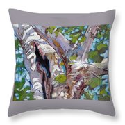 Sunlight On Sycamore Throw Pillow