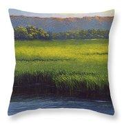 Sunlight On The Marsh Throw Pillow