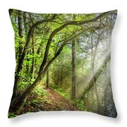 Sunlight On The Trail Throw Pillow