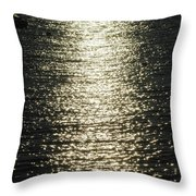 Sunlight On The Water Throw Pillow