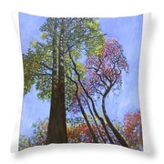 Sunlight On Upper Branches Throw Pillow by John Lautermilch