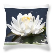 Sunlight On Water Lily Throw Pillow