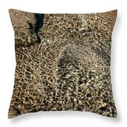 Sunlight Reflection On Underwater Stones And Rocks, Reshi River, Sikkim , India Throw Pillow