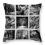 Sunlight Through Live Oaks Collage Throw Pillow