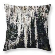 Sunlight Through Spanish Moss Throw Pillow
