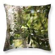 Sunlight Through The Oak Throw Pillow