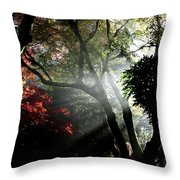 Sunlight Through The Tree In Misty Morning 1. Throw Pillow