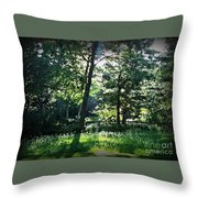 Sunlight Through Trees And Fence Throw Pillow