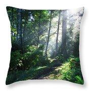 Sunlight Through Trees, Ecola State Throw Pillow