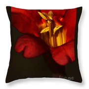Sunlit Attraction Throw Pillow