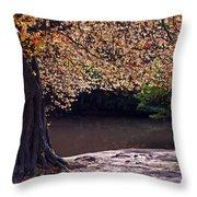 Sunlit Autumn Canopy Throw Pillow