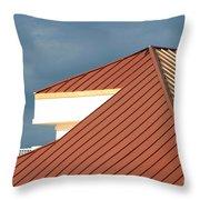 Geometry 101 Throw Pillow by Rick Locke