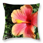 Sunlit Beauty Throw Pillow