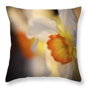 Sunlit Daffodils Throw Pillow