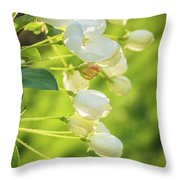 Sunlit Throw Pillow