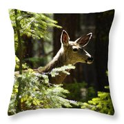 Sunlit Deer Friend Throw Pillow