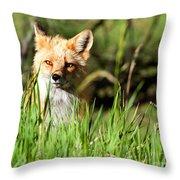 Sunlit Face Throw Pillow