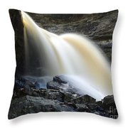 Sunlit Falls Throw Pillow