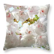 Sunlit Flowers Art Prints White Tree Blossoms Baslee Troutman Throw Pillow