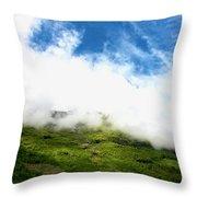 Sunlit Hillside Throw Pillow