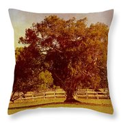 Sunlit Landscape Throw Pillow