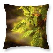 Sunlit Leaves Throw Pillow