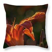 Sunlit Lilly Throw Pillow