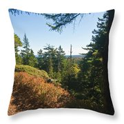 Sunlit Path Throw Pillow
