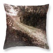 Sunlit Pathway Throw Pillow