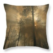 Sunlit Smoke Whispers The Firefighters Throw Pillow