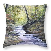 Sunlit Stream Throw Pillow