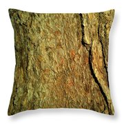 Sunlit Tree Bark Throw Pillow