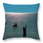 Sunlit Waters Throw Pillow