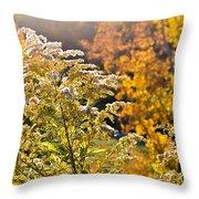 Sunlit Wildflower Throw Pillow