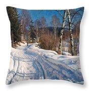 Sunlit Winter Landscape Throw Pillow