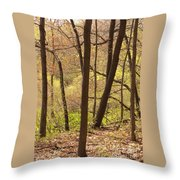 Sunlit Woods Throw Pillow