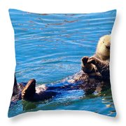 Sunning Otter Throw Pillow