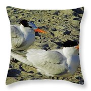 Sunning Terns Throw Pillow