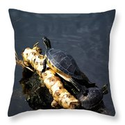 Sunning Turtles Throw Pillow