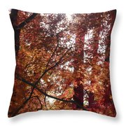 Sunny Autumn Day Poster Throw Pillow