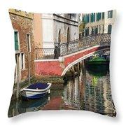Sunny Backwater Throw Pillow