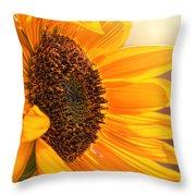 Sunny Beauty Throw Pillow