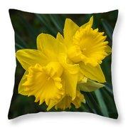Sunny Daffodils Throw Pillow