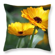 Sunny Day Flowers Throw Pillow