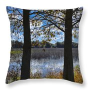 Sunny Day On The Pond Throw Pillow