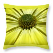 Sunny Days Throw Pillow