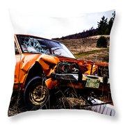Sunny Farm Throw Pillow