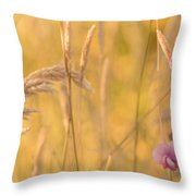 Sunny Garden 2 Throw Pillow