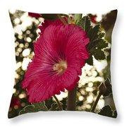 Sunny Garden Mayflower Throw Pillow